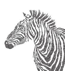 Animal watercolor illustration silhouette cute zebra polka-dot. Vector