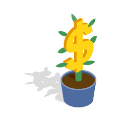 Money tree icon, isometric 3d style