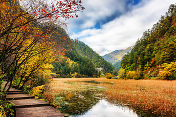 Boardwalk along lake with crystal clear water among fall woods