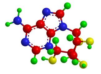 Molecular structure of adenosine