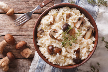 risotto with porcini mushrooms in a bowl close-up. Horizontal top view
