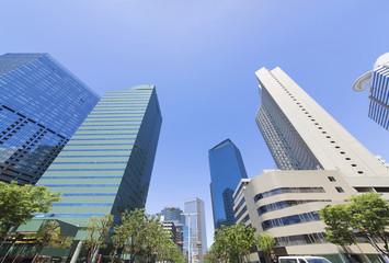 新宿高層ビル街 超広角撮影 快晴 青空 新緑 緑 春 見上げる 公園北 グリーンタワー前