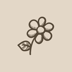 Flower sketch icon.