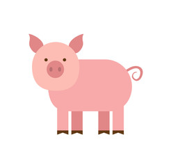 cartoon pig in flat style isolated on white background