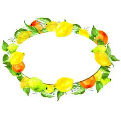 Vintage Border Watercolor Pattern Circular Frame From Fruits Of Lemon Orange