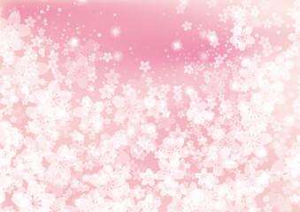 桜ピンクの背景