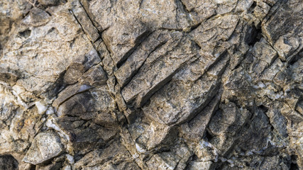 Top view macro detail of rocky, stone great for design, website,
