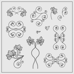 Floral design elements for invitations and greeting cards.