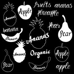 Vector fruit logo.