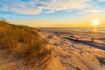 Fototapete - Grass on sand dunes at sunset time on a beach in Leba, Baltic Sea, Poland