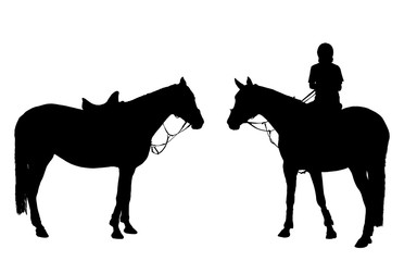 vector man on horseback isolated white background