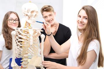 Szkielet, uczniowie na lekcji anatomii