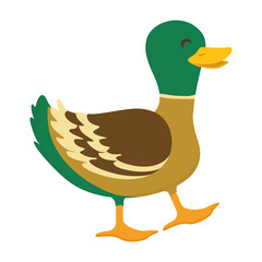 Farm animal concept represented by duck cartoon icon. isolated and flat illustration