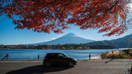 Fuji Mountain with red maple reaf