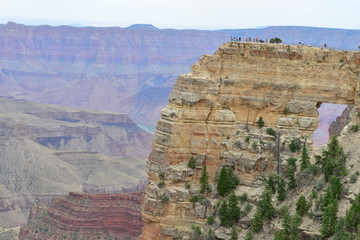 The North Rim of the Grand Canyon in June.
