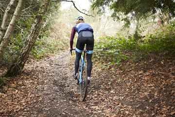 Cross-country cyclist riding on a forest trail, back view