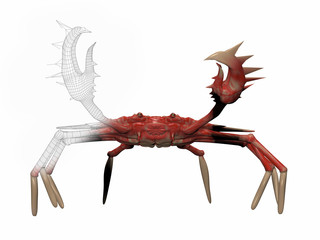 3d rendered illustration of a crab isolated on white