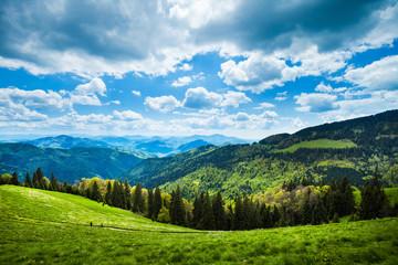 Mountain path landscape, Rodnei Mountains, Romania