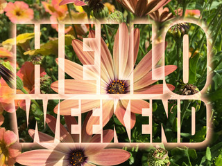 Hello Weekend word on flowers background