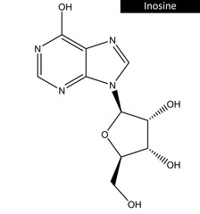Molecular structure of inosine