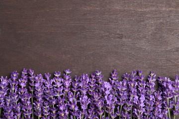 Wall Mural - Lavender.
