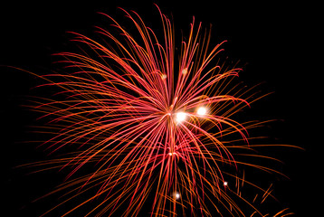 Fireworks explosions in the night sky