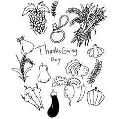 Thanksgiving vegetable in doodle