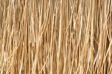 Fototapeta Close up yellow straw wall texture background obraz