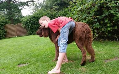 Tierliebes Kind umarmt Hund im Sommergarten
