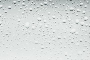 Water Drops./ Water Drops