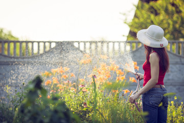 Watering  with a hose,  gardening concept