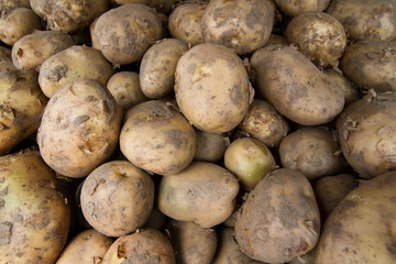 Top view of many potatoes at the market