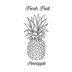 Hand drawn pineapple icon
