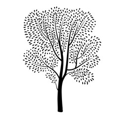 Tree silhouette with leaves isolated over white background. Spring nature wildlife plant design element