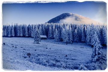 Winter landscape with snow in mountains Carpathians, Ukraine. Vi