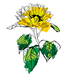 Scalable vector drawing of yellow sunflower with green leaves
