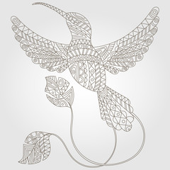 Contour illustration of abstract hummingbird, dark outline on a light background