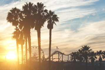 Santa monica pier with palm silhouettes