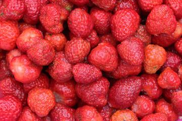 ribambelle de fraises