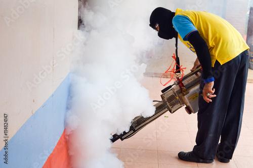 prevent spread dengue fever essay