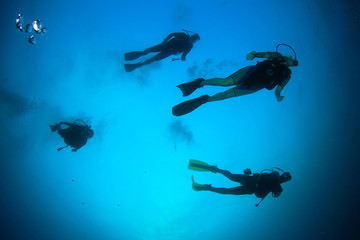Scuba diving group silhouettes