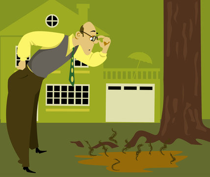 Concerned man looking at a puddle of sewage on the lawn, coming from an overflown septic tank, EPS 8 vector illustration