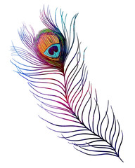 Peacock feather. Watercolor textured illustration on white background. Tattoo