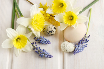 Spring flowers: daffodil and muscari