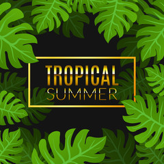 Tropical summer design poster template. Summer vacation with leafs. Jungle paradise