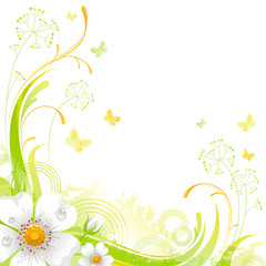 Floral summer background with white wild rose flower, leafs, grass and grunge elements, copy space for your text