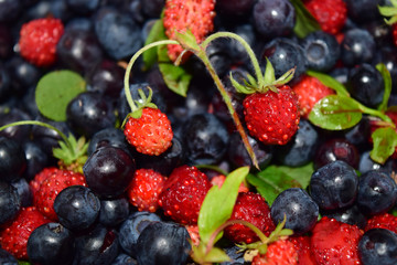 Wild berries. Background with strawberries and blueberry fruits.