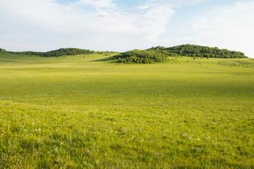 China Inner Mongolia natural grassland