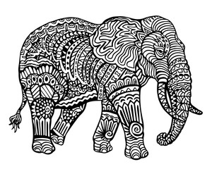 Ethnic Animal Doodle Detail Pattern - Elephant Zentangle  Illustration