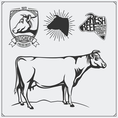 Vector meat labels and illustration of cow. Templates for design meat logos.
